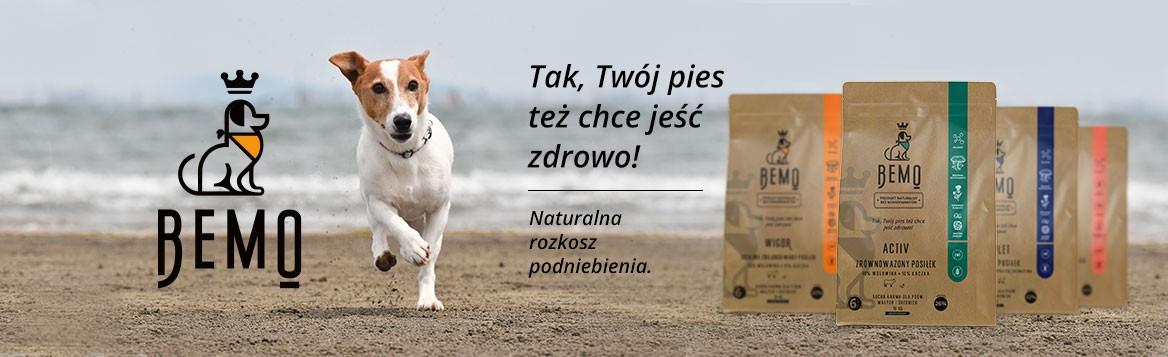 Karma Bemo Kraków
